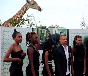 Going Bongo Giraffe